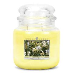 GOOSE CREEK Svíčka 0,45 KG Medová kašička, aromatická ve skle (Sweet Honeysuckle)